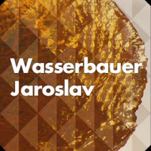 Wasserbauer Jaroslav